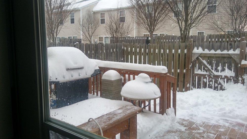 1 Snow.jpg