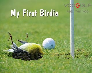 f6404ddc02b4c5a1876f84ef5260441c--funny-golf-pictures-golf-quotes.jpg