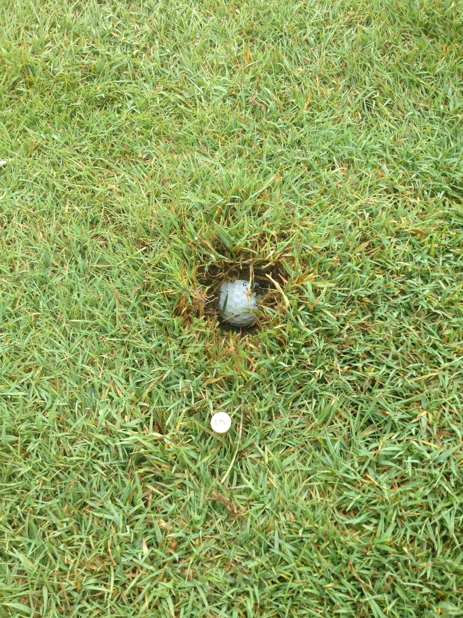 Golf Drive.JPG