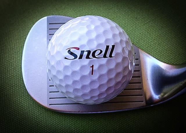 SNELL - with Hogan iron.jpg