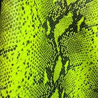Lime Snake.jpg