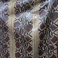 Brown Snake1.jpg