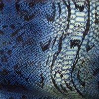 Blue Snake.jpg