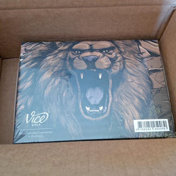 lion in the box.jpg
