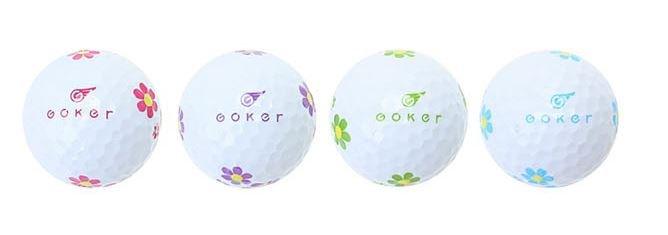 Goker daisy 3.JPG