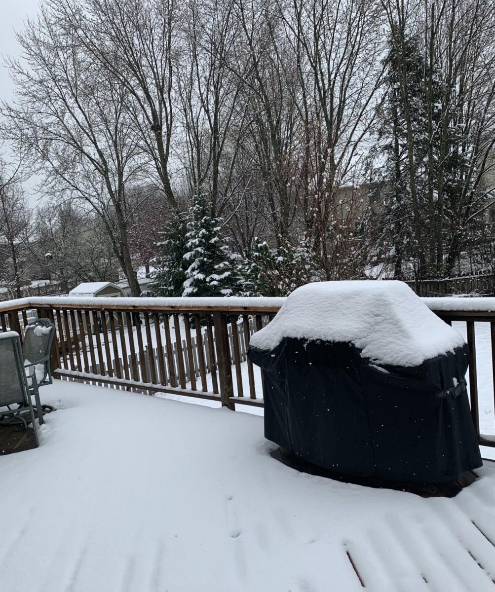 Winter.thumb.JPG.720cca01f0c10a6b5782d874243a08ee.JPG