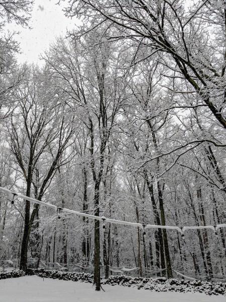 Backyard on April 18th....snow!?!?