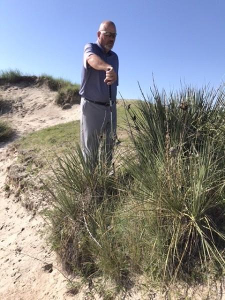 Sand Hills Yucca