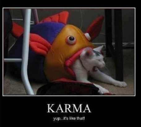 Karma.jpeg.821e4bcd927c10e27bdda5efc03fc864.jpeg