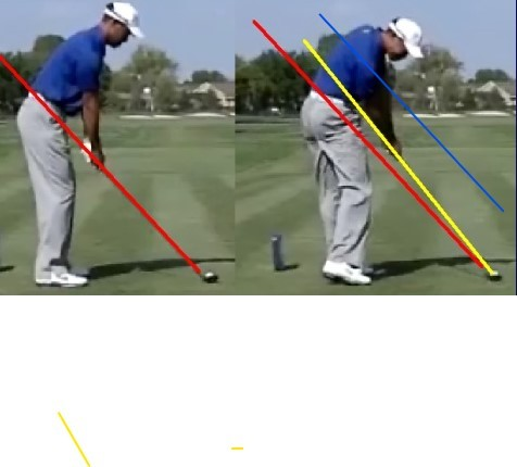 DLOW After lesson 9 improved impact Tiger.jpg