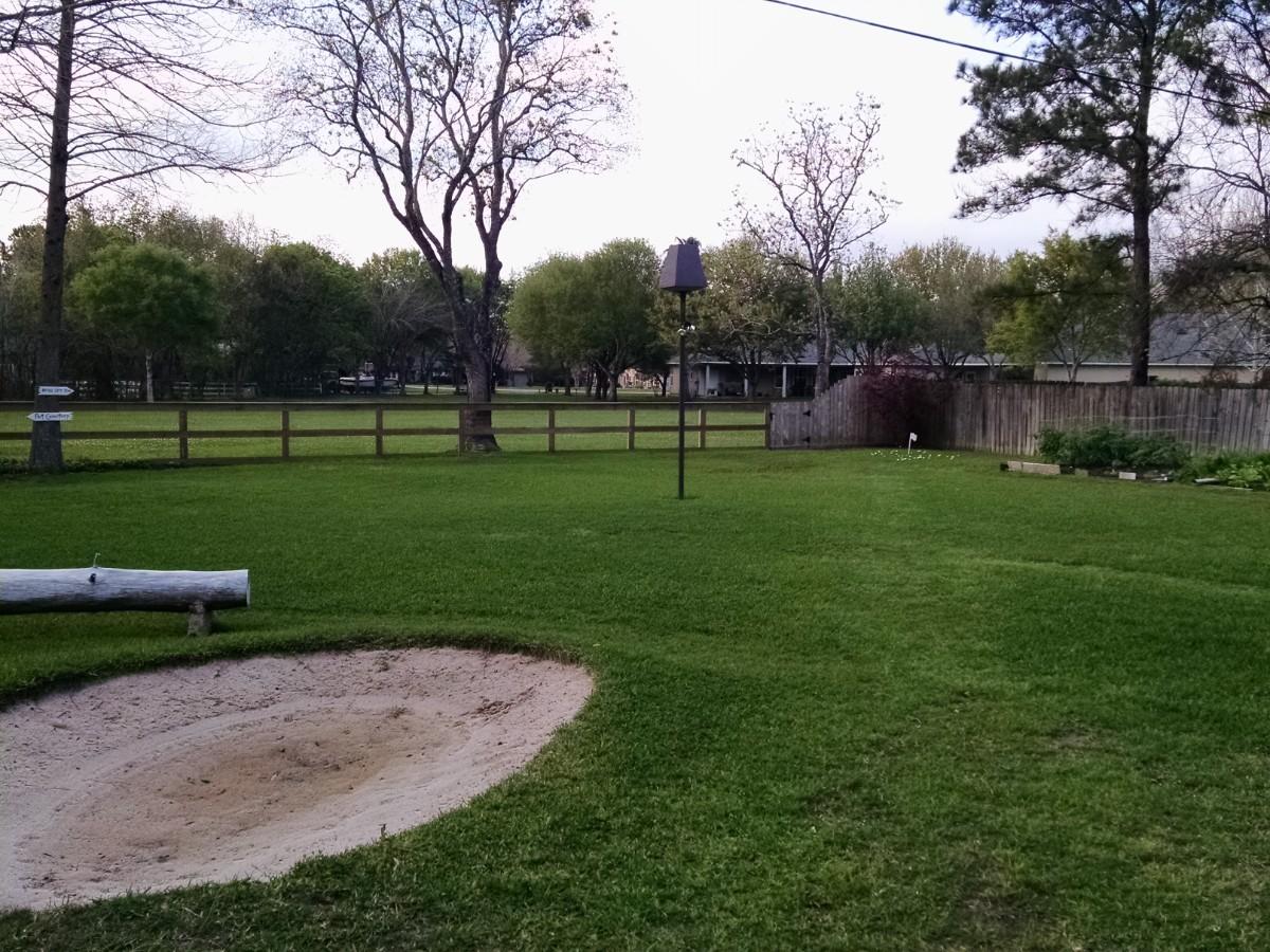 Backyard2 011.jpg