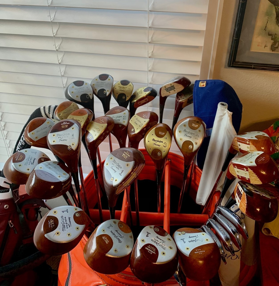 Persimmon collection Oct2020.jpg