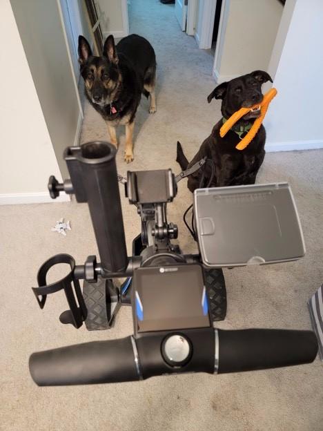 Motocaddy Accessories.jpg