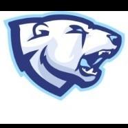 Team Polar Bear