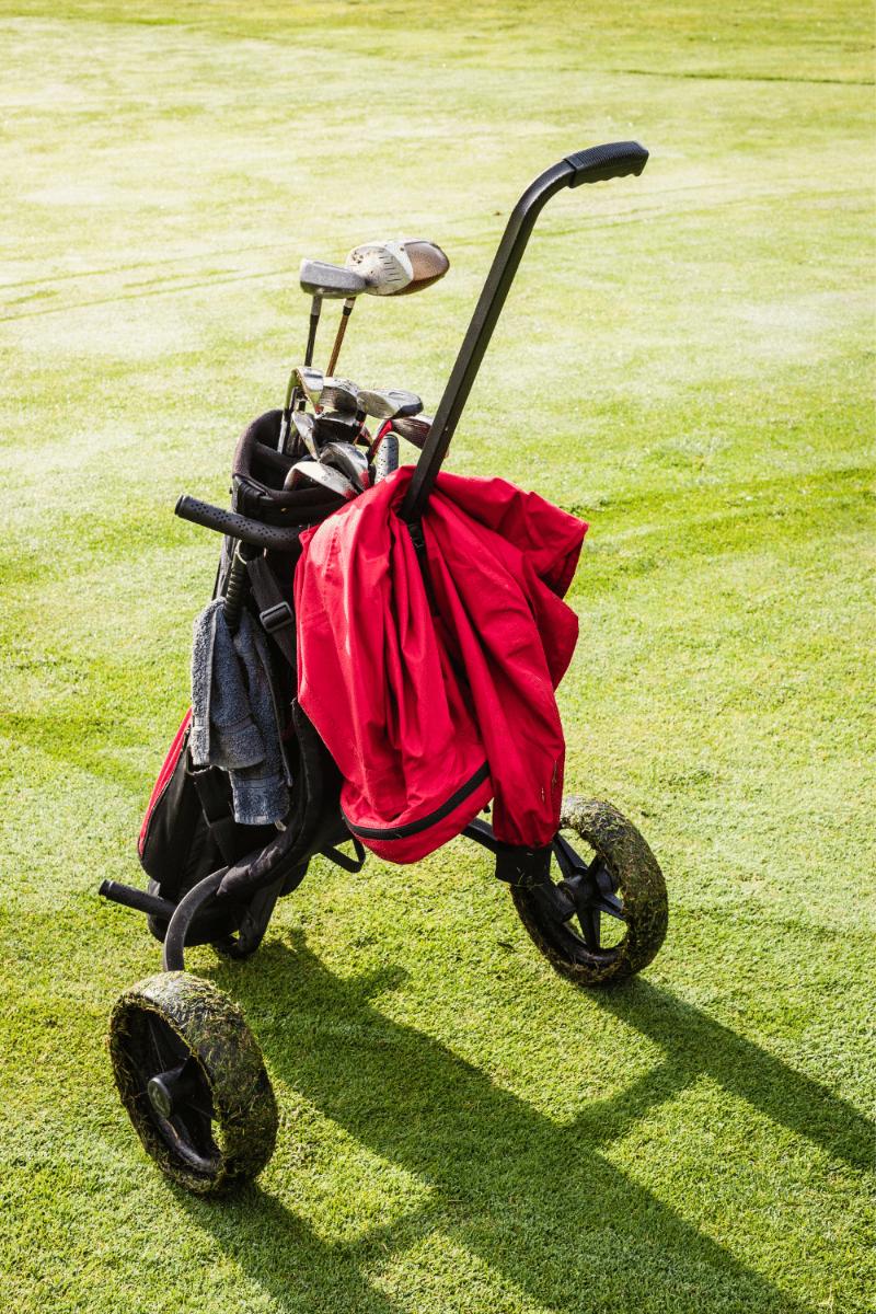 Best Golf Cart Bag.png